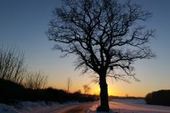 Winter-2021-119