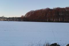 Winter-2021-126