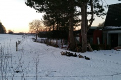 Winter-2021-138