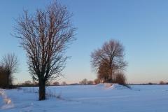 Winter-2021-93