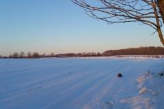 Winter-2021-94